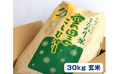 L-2 蛍の里のこしひかり 30kg(玄米)