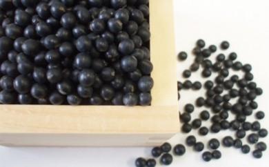 [№5833-0041]黒豆「黒千石大豆」2kg