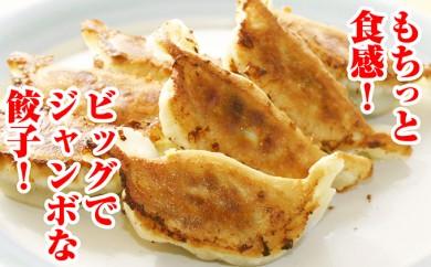 [№5641-0169]北海道産豚肉のジャンボ餃子