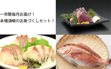 【海の町須崎ブランド】一年間毎月お届け!海の町須崎ブランドお魚づくしセット 【11月23日、受付再開!】