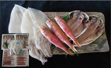 63 萩のブランド魚の詰め合わせ