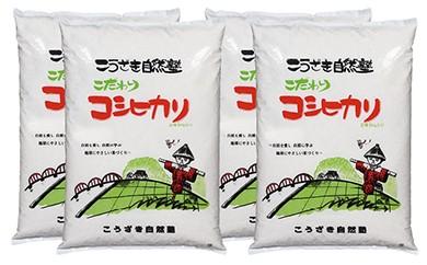 B027 こうざきコシヒカリ(減農薬米)白米20kg