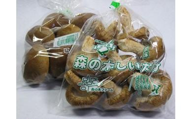 AQ30:森の木ファーム(株)の菌床しいたけ【ひょうご推奨ブランド】(120袋)