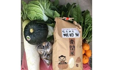 Y03-1 野菜とお米の定期便(年4回)