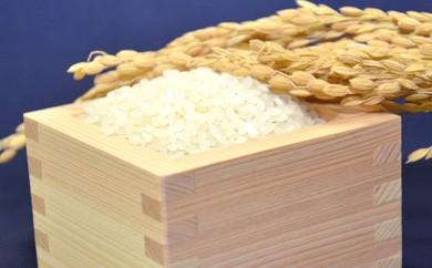 [彩-34]【平成29年産米】 特別栽培米ながさきにこまる・押麦セット