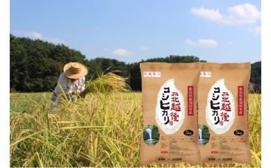 D04【新米!】JA北越後コシヒカリ(特別栽培米)