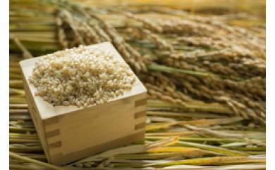 BF10 2017年10月収穫分 福岡県産 ヒノヒカリ玄米 4kg 【11,250pt】