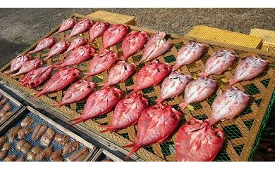 U13_大きな金目鯛干物5枚セット[25,000円以上]◎