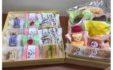 [№5729-0059]信州坂城が誇る銘菓 和菓子と洋菓子の詰め合わせセット