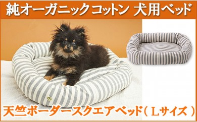 YC58 オーガニックコットン犬用ベッド【天竺ボーダースクエアべッド 杢グレー】Lサイズ 【40,000pt】