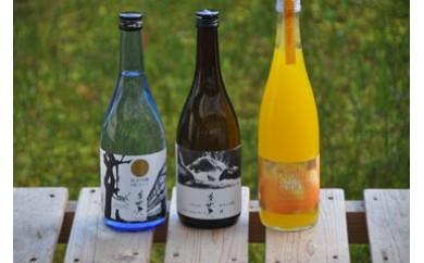 【四国一小さな町の地酒】美丈夫 飲み比べ3本セットC