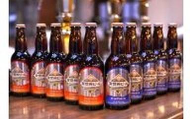 [№5659-0016]南信州ビール 2種セット