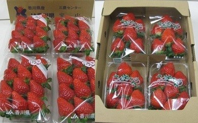 CM03 三豊市産いちご食べ比べセット 約2kg【75pt】