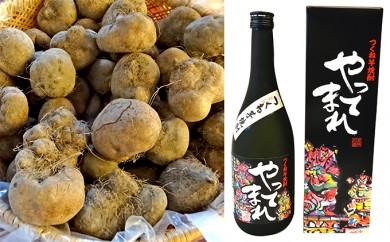 [№5898-0035]青森県五所川原名産 つくね芋焼酎 やってまれ720ml×1