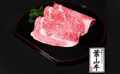 [№5875-0120]冨士屋牛肉店がお届けする湘南ブランド牛肉すき焼 500g
