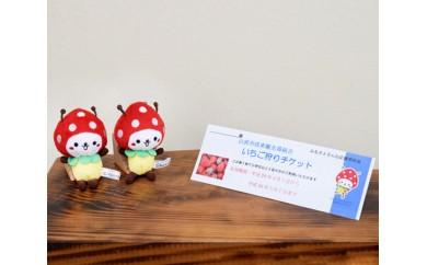 No.044 いちごの街 山武市いちご狩りチケット(3名様分)&SUNムシくんストラップ