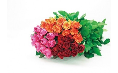 Z12-薔薇の花束