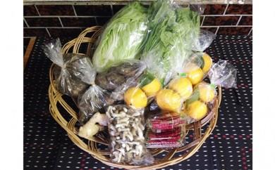 [№5677-0041]天龍村旬の野菜(農産物)詰め合わせセット