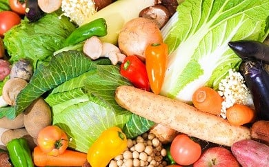 A-1 「上峰の採れたて野菜と九州の野菜セット」 9~11品