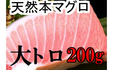 fi044 天然本マグロの大トロ200g程度 寄付額10,000円