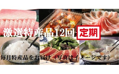 N798 【町制100周年記念!】なはりプラチナコース(贅沢お楽しみ毎月発送)