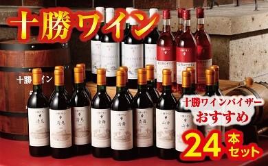 D02-1 十勝ワインバイザーおすすめ24本セット