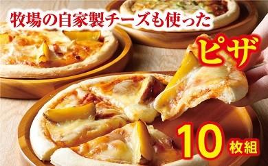 B31-2 ハッピネスピザ10枚組