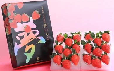 B-146 佐賀県産いちご「化粧箱入り さがほのか」 270g×2【贈答用に!!】