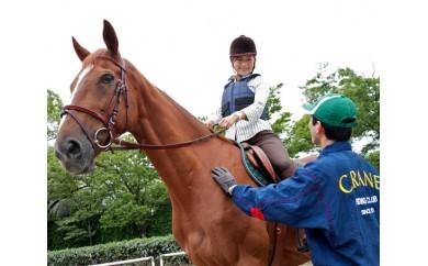 No.028 乗馬体験(30分)+蹄鉄プレゼント