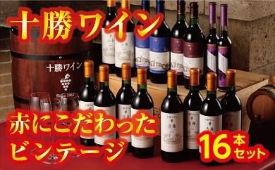 D01-1 「十勝ワイン」 赤にこだわったビンテージ16本セット
