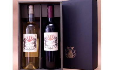 No.004 河内葡萄酒 マスカットベリーA、デラウェアセット
