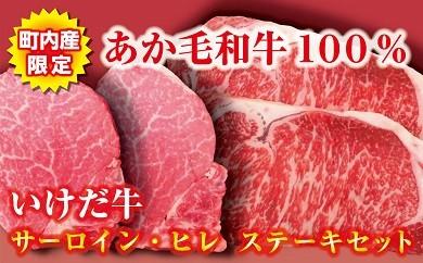 C11-2 いけだ牛(あか毛和牛)サーロイン・ヒレステーキセット