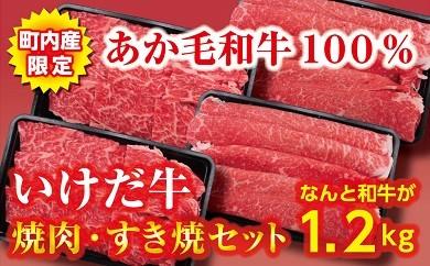 B11-5 赤身が多くヘルシーで評判のあか毛和牛が1.2kg! いけだ牛焼肉・すき焼きセット