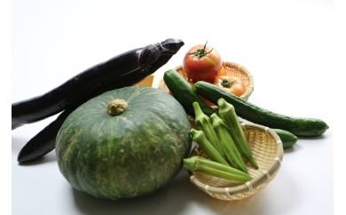 A-11 夏野菜の詰め合わせ(5kg)