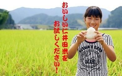 高知県四万十町返礼品仁井田米ヒノヒカリ