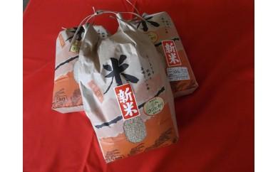 H29年度 玉城産お米「コシヒカリ」玄米15kg ※9月中旬より発送します。