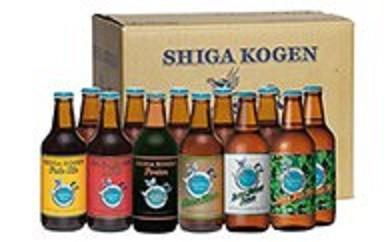 [№5658-0102]玉村本店 志賀高原ビール12本セット