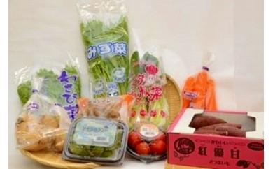 JAなめがた 季節の野菜定期便(隔月1回・計6回発送)