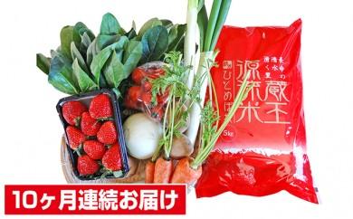 [№5800-0083]【10ヶ月連続お届け】蔵王源流米5kg&果物・野菜セット