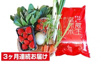 [№5800-0081]【3ヶ月連続お届け】蔵王源流米5kg&野菜果物セット