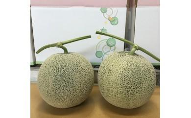 【E-6】富良野赤肉メロン『北添花』 【2玉】