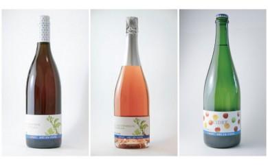 東御市産ワイン 3本 (アルカンヴィーニュ産)