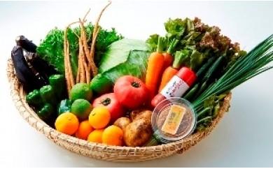 I29009 国東の「旬」をお届け!新鮮野菜と果物の1年間定期便〃計12回