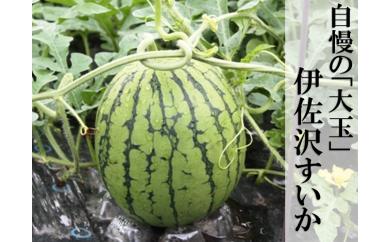 H1313 伊佐沢すいか(長井市産) 大玉2個