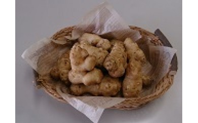 A-62 多良岳山系で育てた美味しい菊芋(キクイモ)3kg