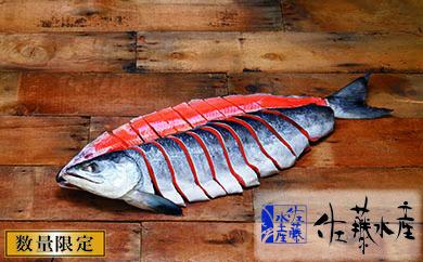 D-008 熟成新巻鮭 2.3kg