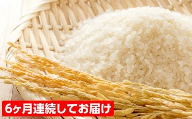 [№5788-0042]【no.10】人気のお米 ミルキークイーン<60kg>10kg(5kg×2)を6回お届け!