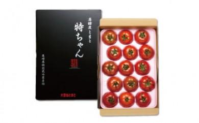 SM13<限定>トマト 特ちゃん 1㎏