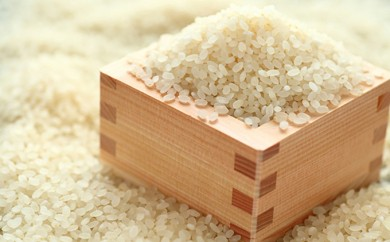 [№5758-0104]アイガモ有機栽培米 ひとめぼれ