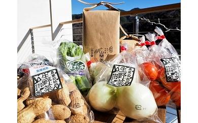 山間米と西土佐農業公社の野菜たち